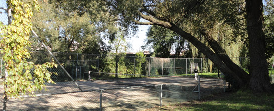 free tennis courts at Westerpark in Amsterdam