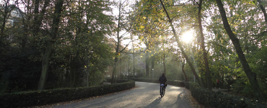 Lovely November light in the Vondelpark in Amsterdam